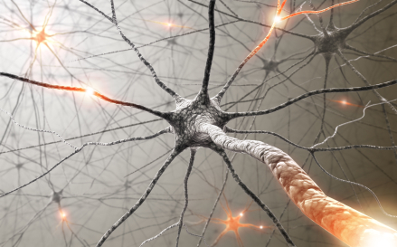 polyneuropathy symptoms and treatment